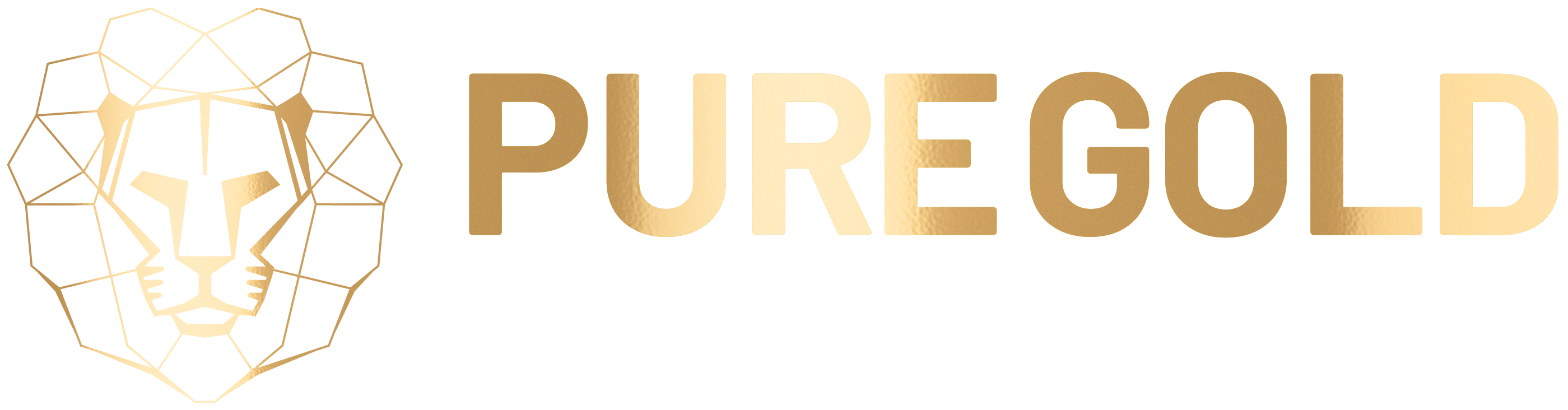 Puregold.energy (Experience)